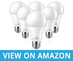 BESLAM Daylight 60 Watt 2700K Dimmable Light Bulb