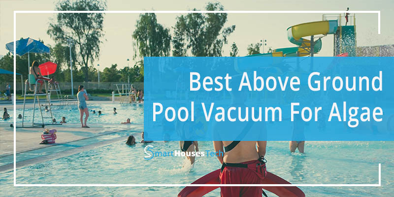 best above ground pool vacuum for algae - SmartHousesTech