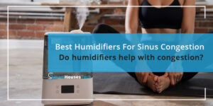 Best Humidifier For Sinus Congestion Problems - SmartHousesTech