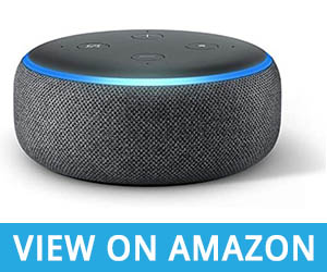 3 Amazon Echo Dot For Elderly people