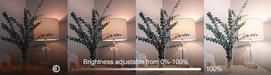Alexa Compatible Smart Light Bulb A19 RGBCW Multicolor